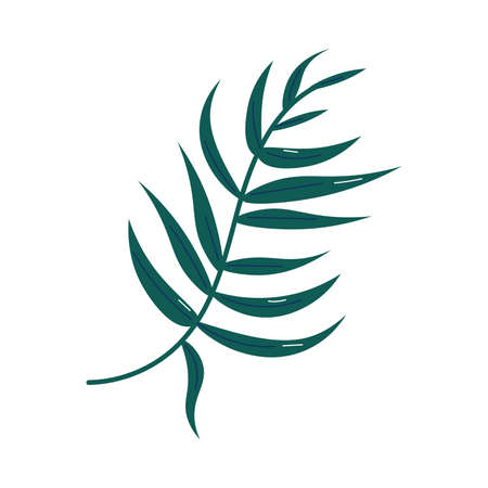 Traditional symbol of autumn fallen green leaf from tree vector illustration Vettoriali