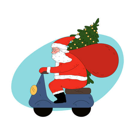 Santa man courier in traditional red clothing delivering Christmas tree on scooter