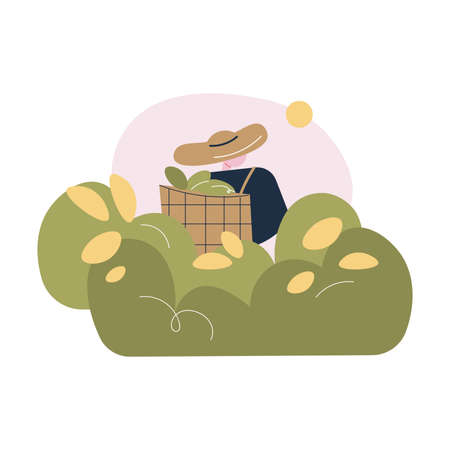 Worker in uniform and hat carrying basket with fresh green tea leaves Illustration