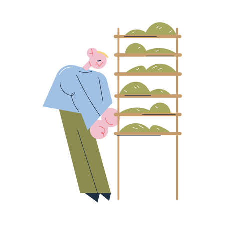 Young positive man worker standing and putting green tea leaves on shelves for drying