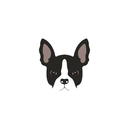 brawny: French bulldog head isolated on white background. Vector illustration Illustration