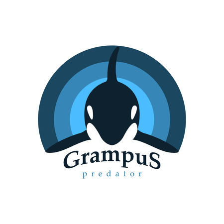 grampus: Logo orca whale. Isolated white background. Grampus predator. Template for your business company. Creative abstract colorful. Vector illustration. Illustration