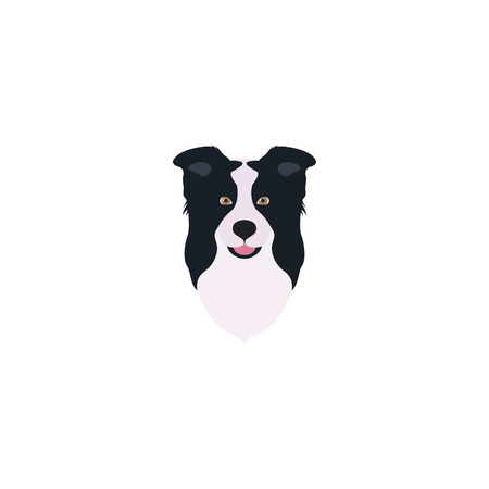 border collie: Abstract vector illustration of border collie head. Illustration