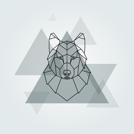 grey wolf: Geometric vector animal grey wolf head background. Illustration