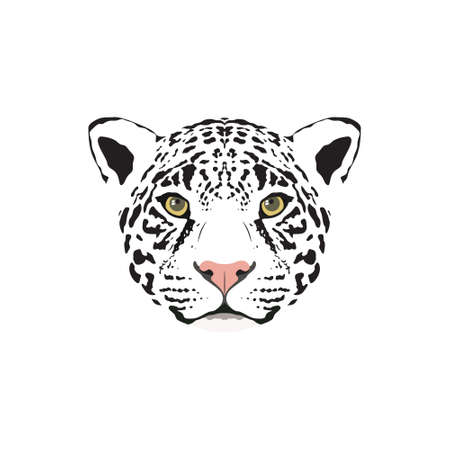 Vector illustration of a white jaguar head. Suitable as tattoo, team mascot, symbol for zoo or animal preservation center.