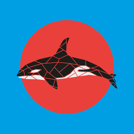 Geometry grampus whale vector illustration on red and blue background. Illustration
