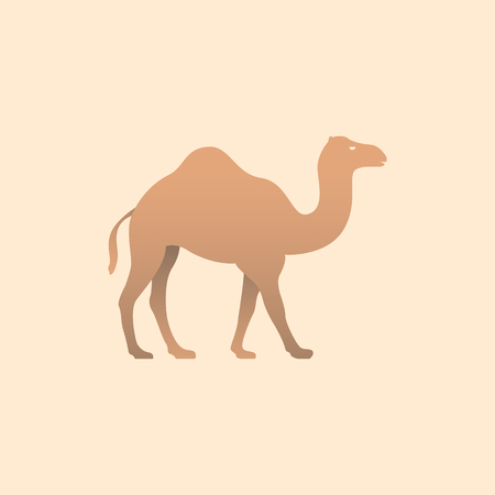 Vector illustration of brown camel. Icon logo camel side view, profile. Illustration