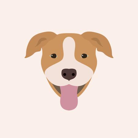 American pitbull terrier portrait