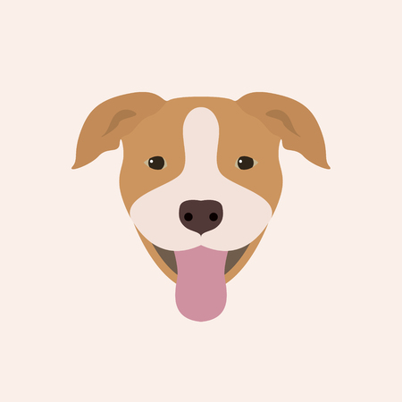 American pitbull terrier portrait