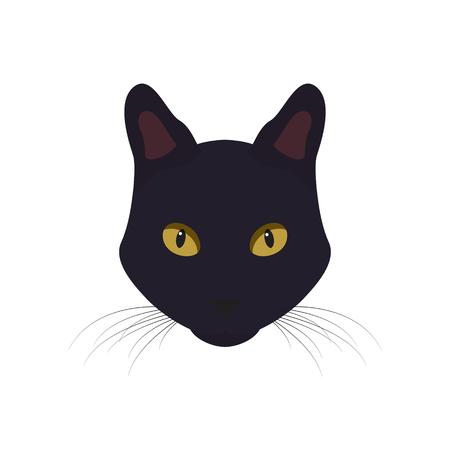 Black cat with yellow eyes vector Illustration.