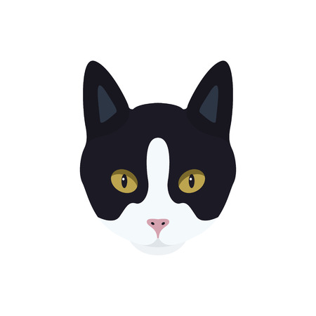 Portrait of a black and white cat with a pink nose. Stock Vector - 85991771