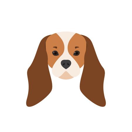 Portrait of Cavalier King Charles Spaniel. Dog illustration.