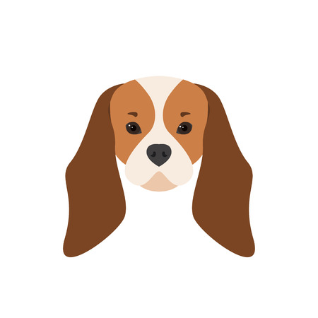 Portrait of Cavalier King Charles Spaniel. Dog illustration.