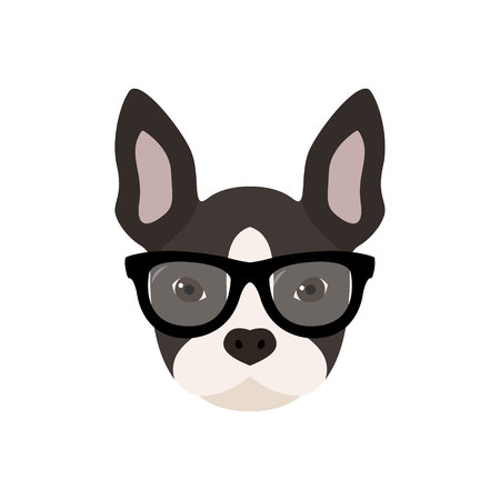 French bulldog with glasses. Cute vector illustration.