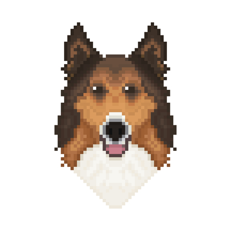 Collie dog head in pixel art style. Vector illustration.