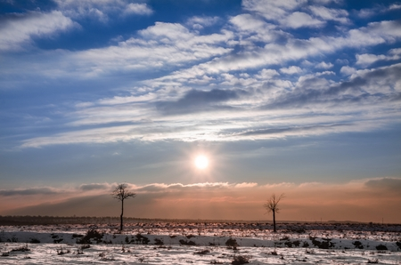 Winter landscape with the sun guarded by two small trees as models on a catwalk Banque d'images