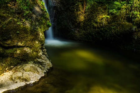 A small gutter waterfall hidden behind mossy cliffs in the forest