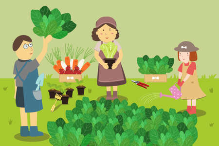 obtain: Family farmers. Growing Vegetables in a Home Garden