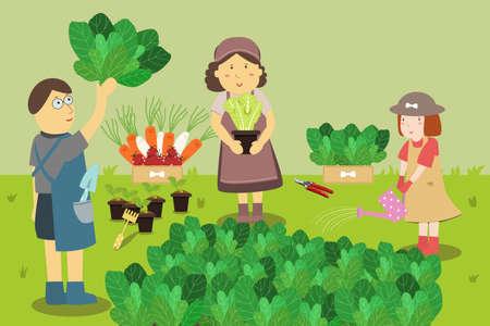 home garden: Family farmers. Growing Vegetables in a Home Garden