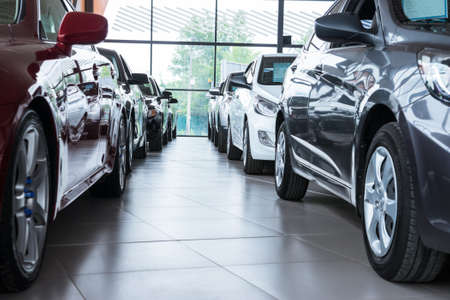 Modern beautiful showroom with cars being sold