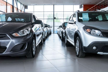 Stock of cars in showroom of automobile dealer 스톡 콘텐츠