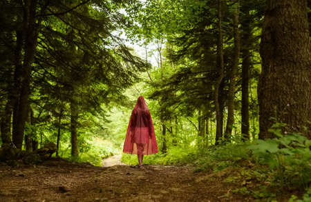 Red riding hood walks through enchanted forest