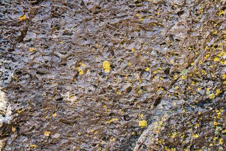 lichen: Close-up of stone covered by lichen Stock Photo