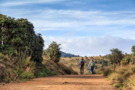 Group of travelers hike in Horton Plains