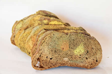 Slices of old moldy rye bread on white background
