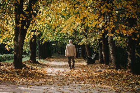 Elderly man walks alone in autumn park Stock Photo