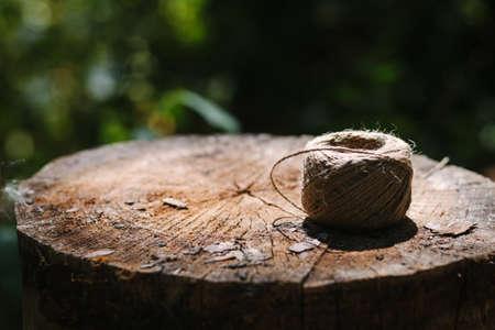 hank: Hank of twine lies on tree stump