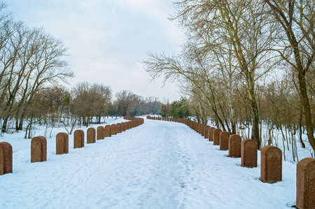 unmarked: Straignt rows of gravestones in winter Stock Photo