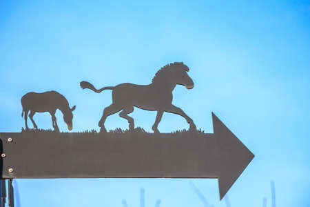 Close up arrow with horses silhouette in zoo Stock Photo