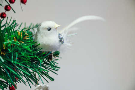 Close up Christmas toy of white bird on tree Stock Photo