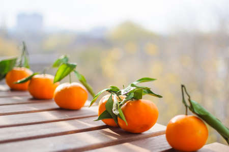 Fresh tangerines on wooden surface outdoors