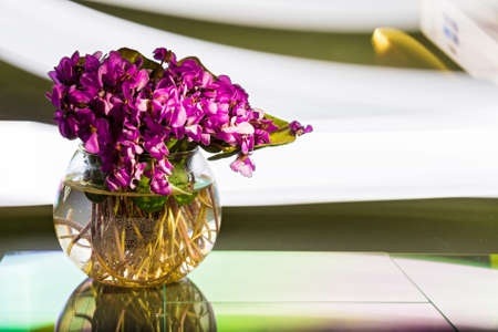 A small bunch of beautiful spring violet flowers put in water in transparent glass bowl vase