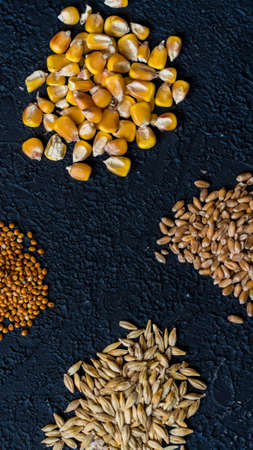 Piles of six different grains on black background
