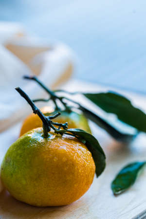 Close up two fresh tangerines with leaves on white Stock Photo