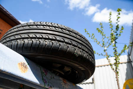 Used car tire lies in garden
