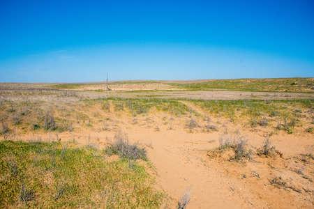 Semi-desert nature on sunny day
