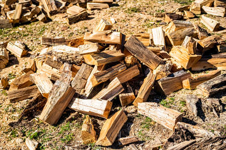 Chopped logs firewood on ground in back yard 스톡 콘텐츠