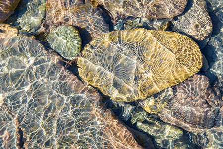 Close up of clear water of mountain river with underwater stones Stock Photo