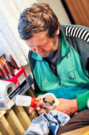 nursing bottle: Puppy feeding