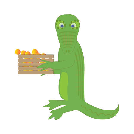 suprise: Crocodale carries a box full of  oranges