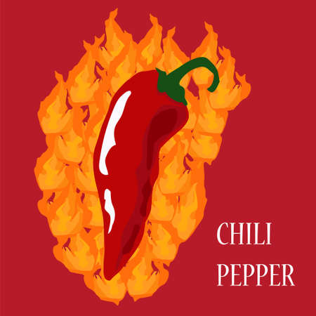 spicy food: Chili pepper burning on fire - illustration of hot spicy food Illustration
