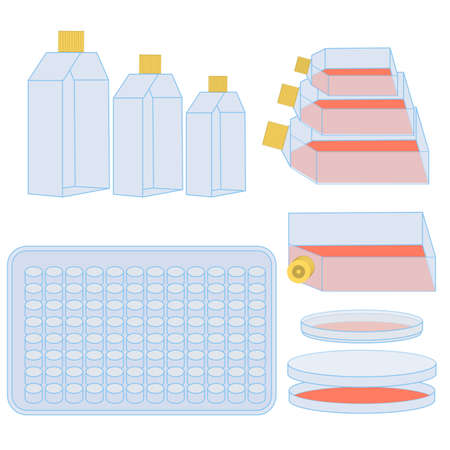 フラスコ、細胞育成用プレート。自然科学の実験で使用する実験装置のベクトル イラスト