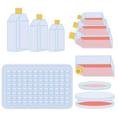 세포 배양 용 플라스크 및 플레이트. 자연 과학 실험에 사용되는 실험실 장비의 벡터 일러스트 레이 션 스톡 콘텐츠 - 65088800