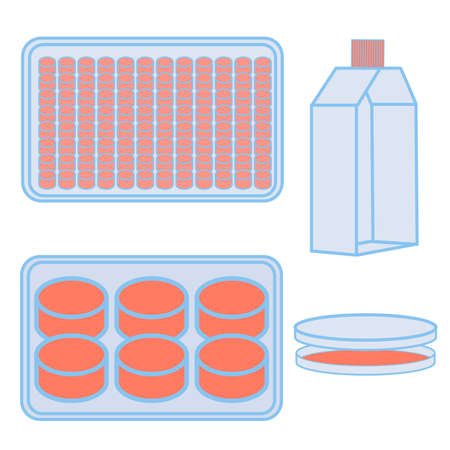 Flask and plates for cell cultivating. Vector illustration of lab equipment used in natural sciences experiments