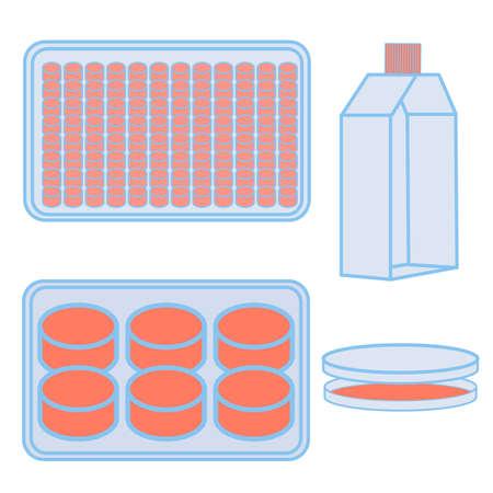 Frasco y placas para el cultivo de células. Ilustración vectorial de equipo de laboratorio utilizado en las ciencias naturales experimentos
