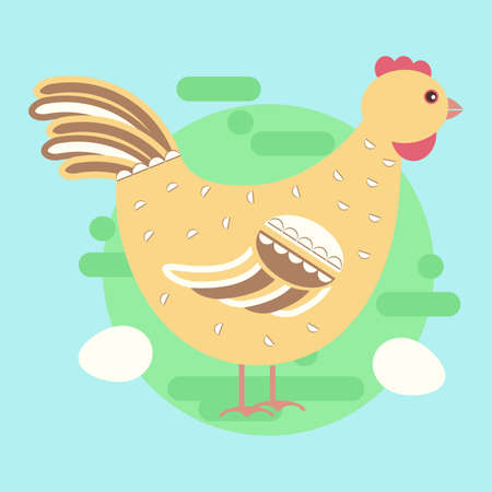pet breeding: Chicken concept. Cute stock vector illustration of a domesticated bird in flat style for eco farm, easter decoration, poultry.Cartoon character.
